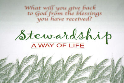 Stewardship Quotes Pleasing Stewardship